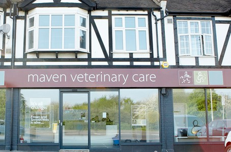 Maven veterinary care building