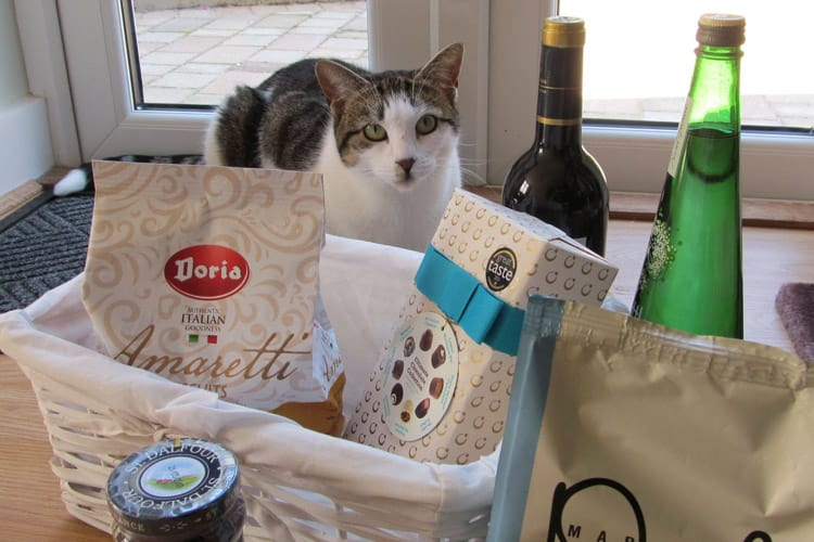 Pixel guarding his owners open day hamper.