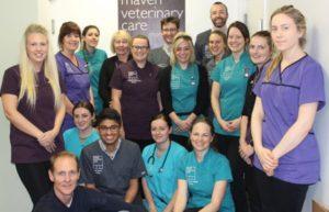 Vets achieve hospital status