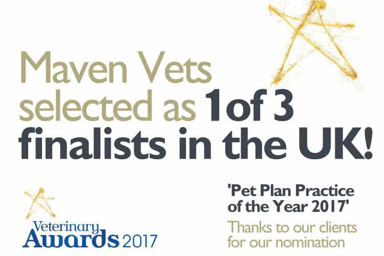 maven-final-3-practice-of-the-year-2017-