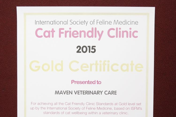 maven-gold-certificate-feline-friendly-practice_