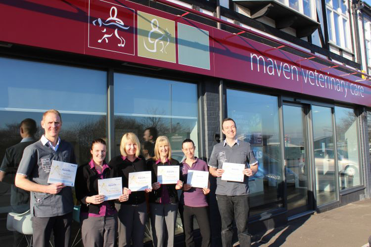Maven receives multiple nominations