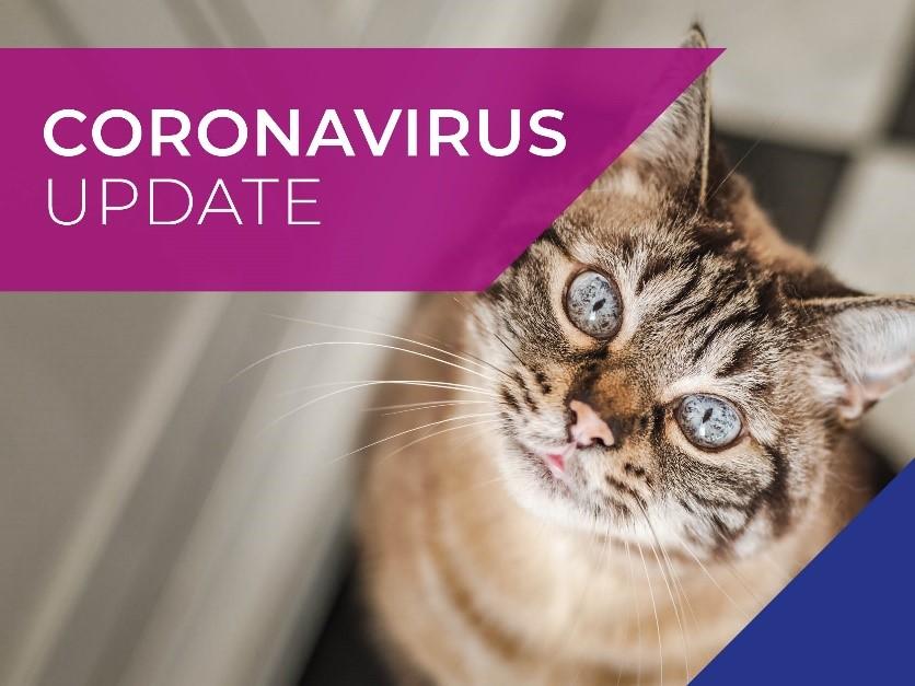 Pet update COVID19